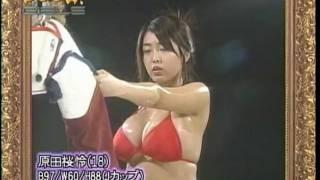Orei Harada - Pooh Girls Clip 原田桜怜 動画 8
