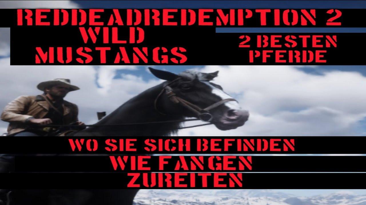 Rdr2 Pferde