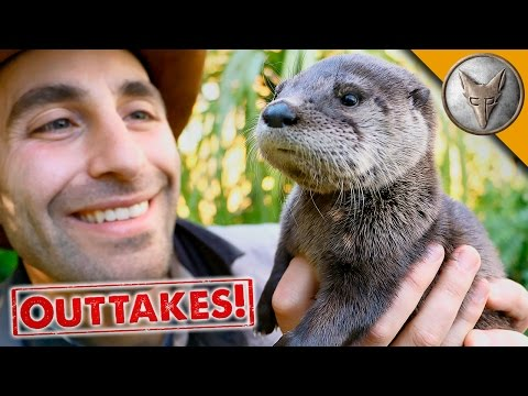 Playful Baby Otter - Outtakes