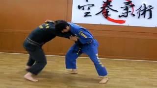 (120)Gongkwon Yusul Jwasul - Samwonbon forms of four(Korean martial arts)