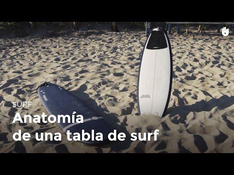 anatomía-de-la-tabla-|-surf
