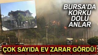 Bursa'daki Orman Yangını Villalara Sıçradı! Yanan Villalar Havadan Görüntülendi