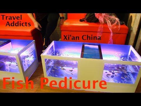 Fish Pedicure Xi'an China