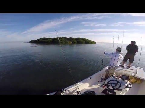 Biscayne bay inshore fishing