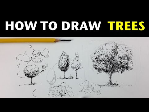 how-to-draw-trees-with-pen-&-ink