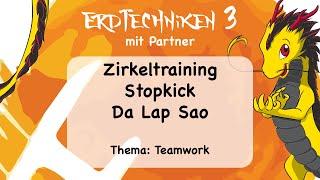 Drachenkinder 10-12 Erde 3 mit Partner