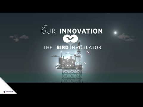BIRDS INVIGILATOR 11