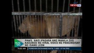 NTG: PAWS, nais ipasara ang Manila Zoo kasunod ng viral video ng pangingisay ng isang leon