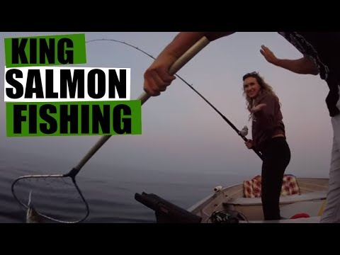 Lake Michigan Fishing: King Salmon