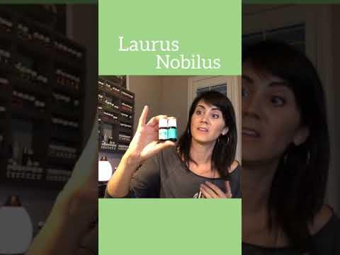 oils:-laurus-nobilis---(bay-laurel)-young-living