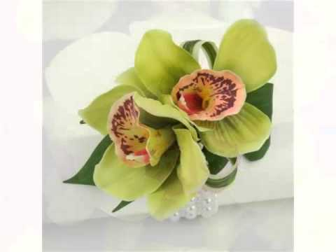 Green Cymbidium Orchid   Collection Of Nice And Rare Flower Images