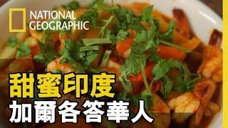【甜蜜印度】「加爾各答,全印度華人最多的地方,主要是客家人!! 種族融合下交疊出的料理也格外富有不同的風味」