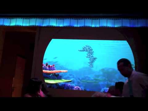 Day 4- Nassau and Snorkeling~ The Lovenerds' Epic Disneymoon Walt Disney World/Disney Dream-