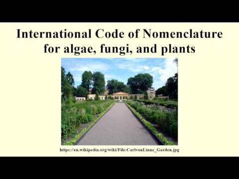 International Code of Nomenclature for algae, fungi, and plants