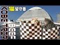 神戸観光!三ノ宮で神戸牛と有馬温泉のグルメ旅!【猫留守番でATAOの土産】KOBE TRIP…