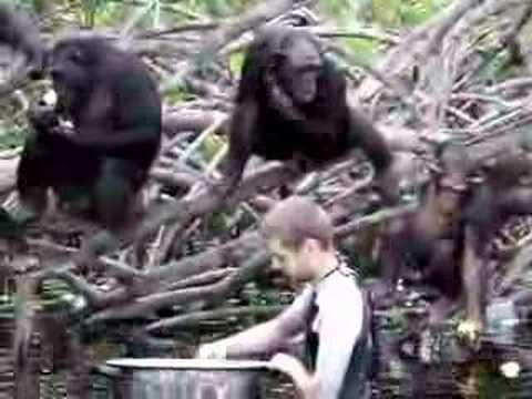 H.E.L.P. Congo