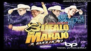 MC DOURADO DJ BIDEL E DJ NANDO - PEGA CHIFRADA 2 (Exclusiva Badalasom)