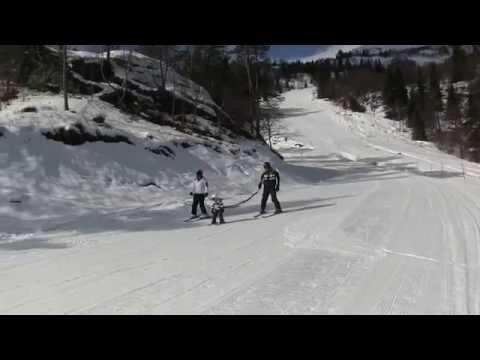Voss, Noorwegen - Skigebied review - Snowplaza