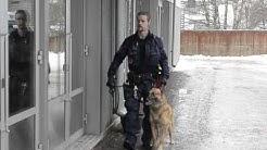 Poliisikoirat Kisapuiston jäähallissa
