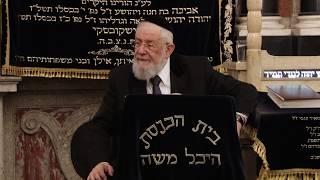"""הרב ישראל מאיר לאו כד' סיון תשע""""ט 26/06/19 Rabbi Israel Meir"""