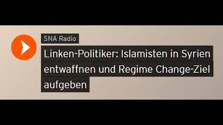 #aufstehen Linken-Politiker: Islamisten in Syrien entwaffnen - Regime Change aufgeben (Sputniknews)