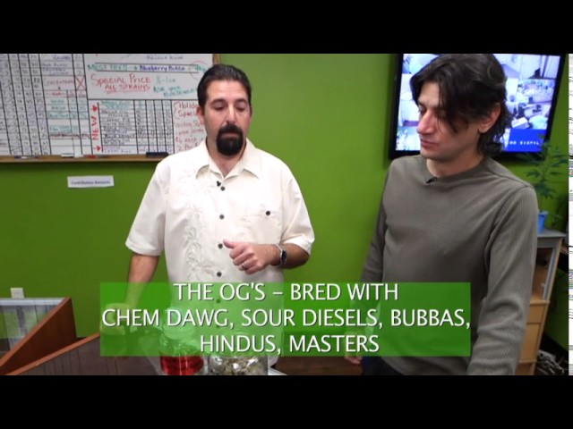 Cannabis Career Institute Dispensary Mgmt Lesson #1