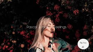 Pascal Junior - Feelings