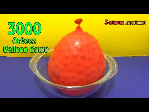 3000 Orbeez Balloon Bomb Experiment | 5-Minutes Experiment