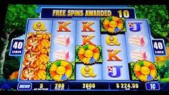 The Cheshire Cat Slot Machine- 4 BONUS FEATURES @ $2.00 BET