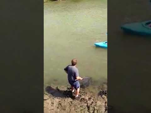 Kentucky teen girl's exciting MONSTER catch in Yankeetown Barge Canal!!