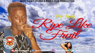 Mr Pek - Ripe Like Fruit [Curse Breaker Riddim] July 2019