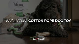 Buckbone Organics | Dog Toys Made in the USA | Organic Dog Toys | Rope Toys for Dogs