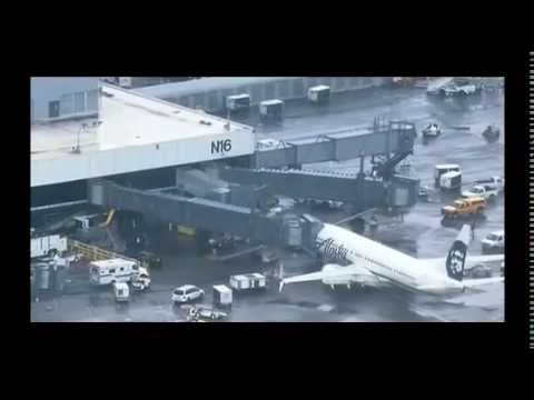 Airport worker trapped in plane's luggage hold heard screaming during takeoff