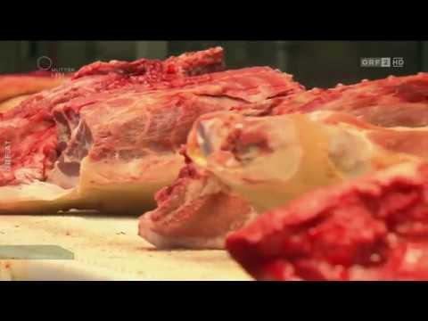 Der Hohe Preis Fürs Billigfleisch ORF Am Schauplatz
