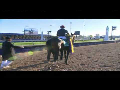 04.11.2011 Churchill Downs Breeders Cup 2011 Friday´s Race Summary