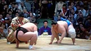 Reminder - you can watch all my matches in HD 720p** Sekiwake Terun...