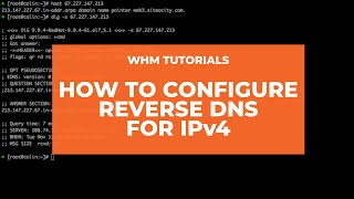 WHM Tutorials- How to Configure Reverse DNS for IPv4