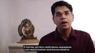 видео АЮРВЕДА - Питта-Капха Доша