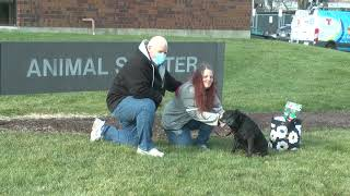 Reunited and it feels so good: Dog, owner reunited after three years apart