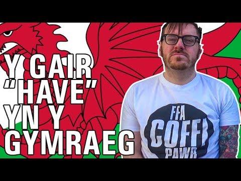 """Y Gair """"Have"""" yn y Gymraeg"""