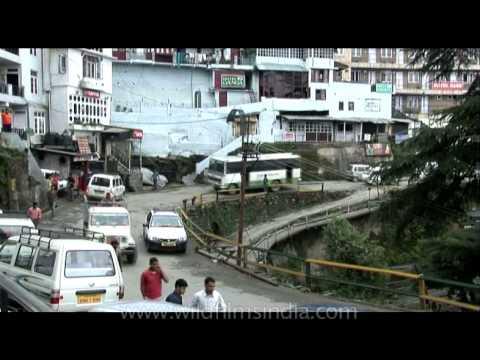Enjoy driving in the hills of Shimla : Himachal Pradesh