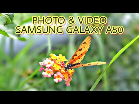Samsung Galaxy A50 Camera Test!!! Photo & Video