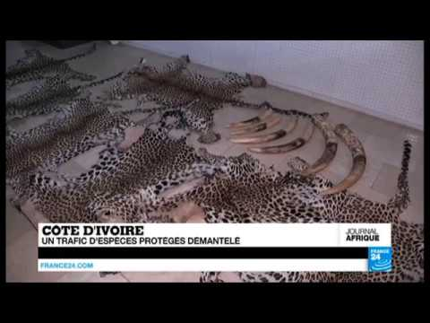 1st EAGLE arrest in Ivory Coast - FR 24
