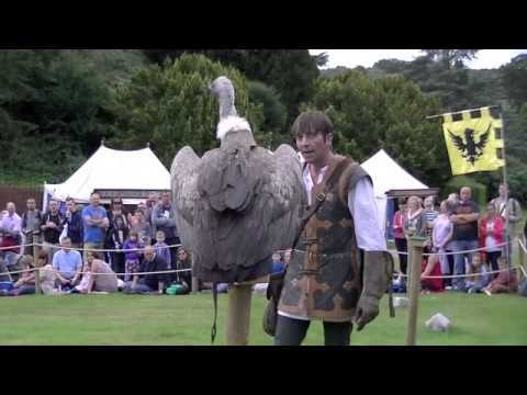 Warwick Castle - Birds of prey display show