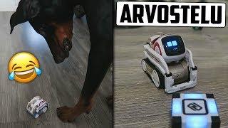 Bruno Tapaa Älykkään Robotin!
