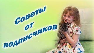 Содержание шиншиллы - Советы от ПОДПИСЧИКОВ - Уход за шиншиллой