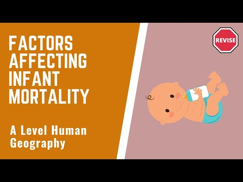 As Human Geography - Factors of Infant Mortality Rates