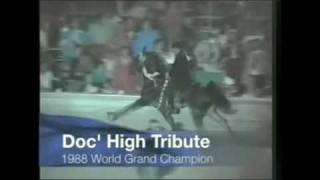 Tennessee walking horse world grand champions (70's-early 90's)