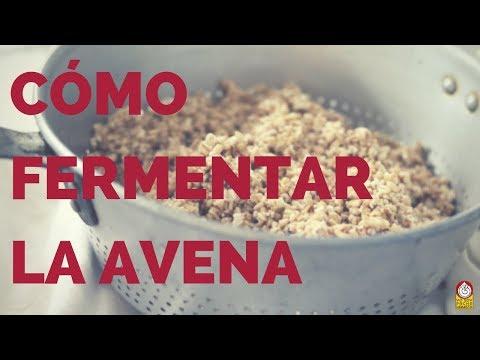Cómo preparar Y FERMENTAR LA AVENA (SERIE AVENA PARTE 5)