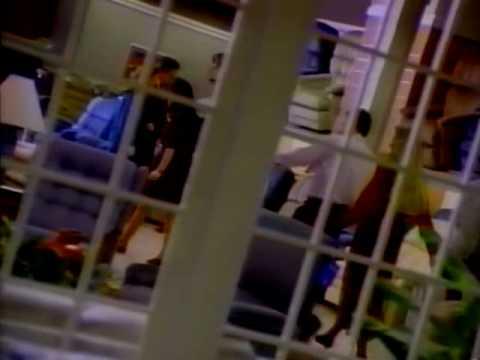 Montgomery Ward (1986)